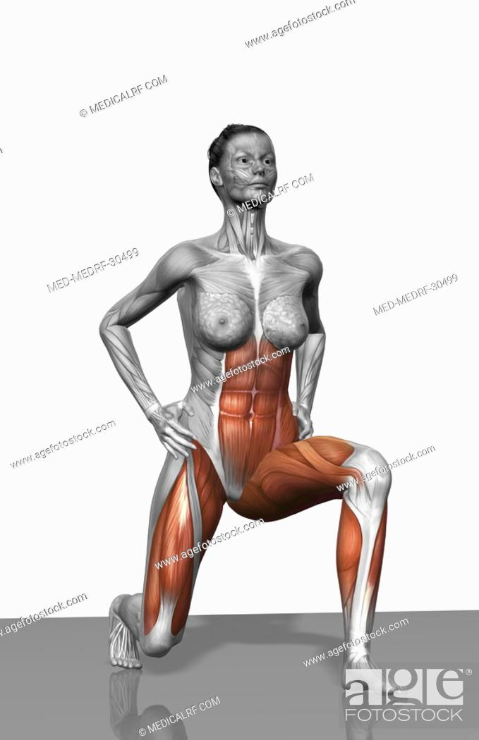 Stock Photo: Lunge exercise Part 1 of 2.