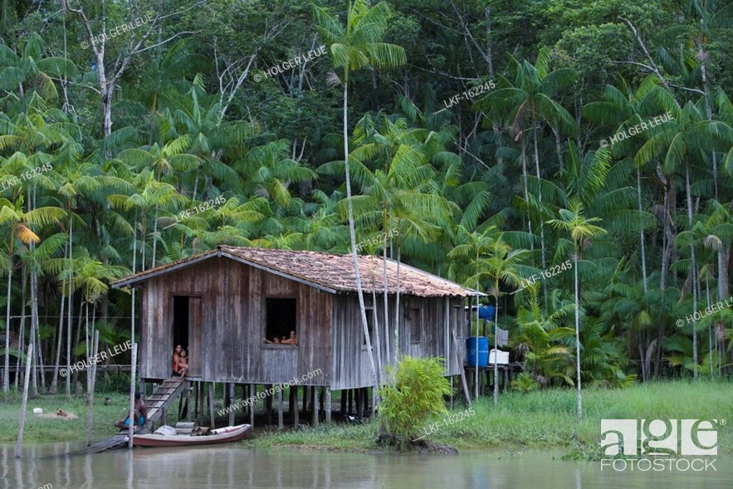 Charming Stock Photo   House On Stilts Along The Amazon River And Tropical  Rainforest, Combo Island, Near Belem, Para, Brazil, South America