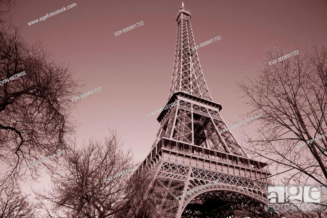 Stock Photo: Eiffel Tower with Winter Trees in Paris, France.