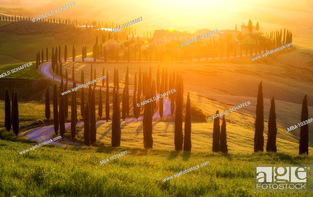 Stock Photo: Hilly landscape, Agriturismo Baccoleno, Crete Senesi, Tuscany, Italy, sunset behind the country house, warm back light.