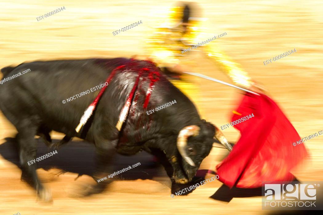 Stock Photo: Bullfighting.