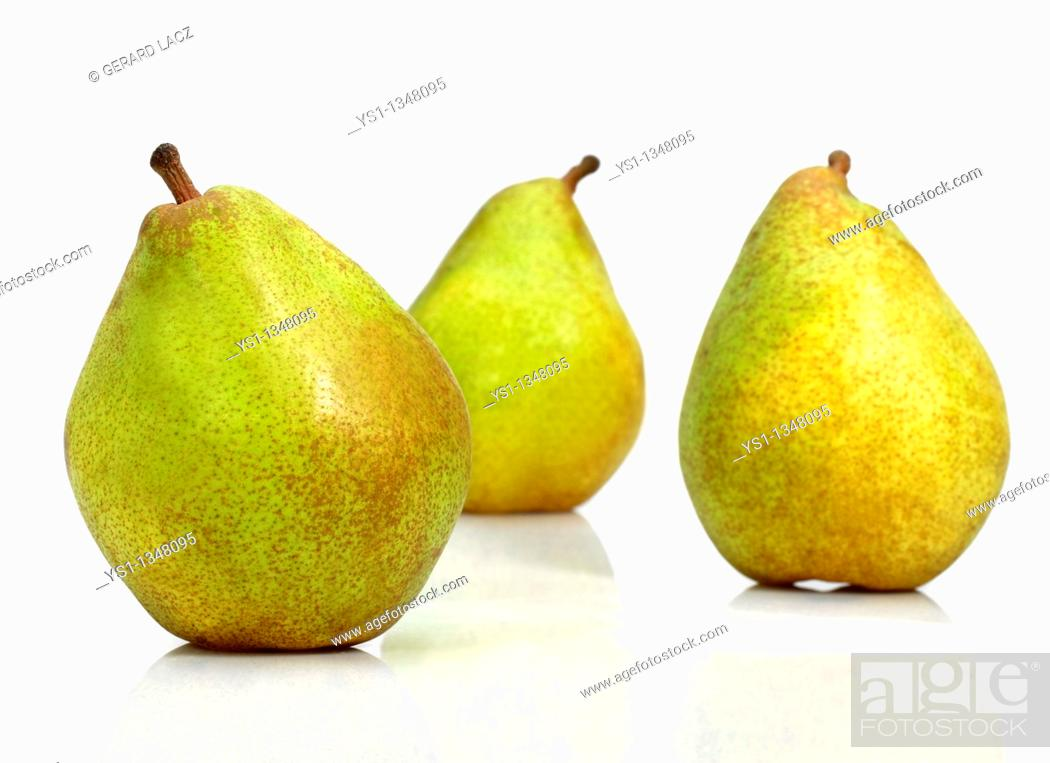 Stock Photo: COMICE PEAR pyrus communis AGAINST WHITE BACKGROUND.
