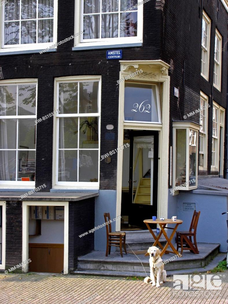 Stock Photo: Living in a canal house, with dog, Netherlands, Amsterdam.