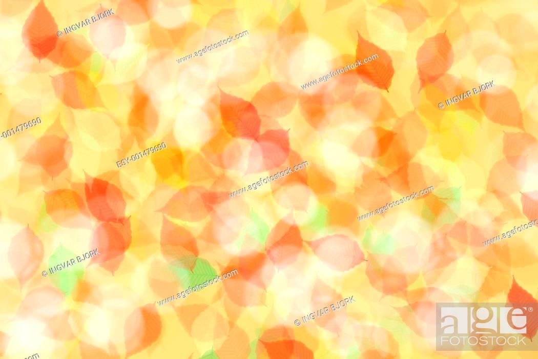 Stock Photo: colorful abstract leaves background.