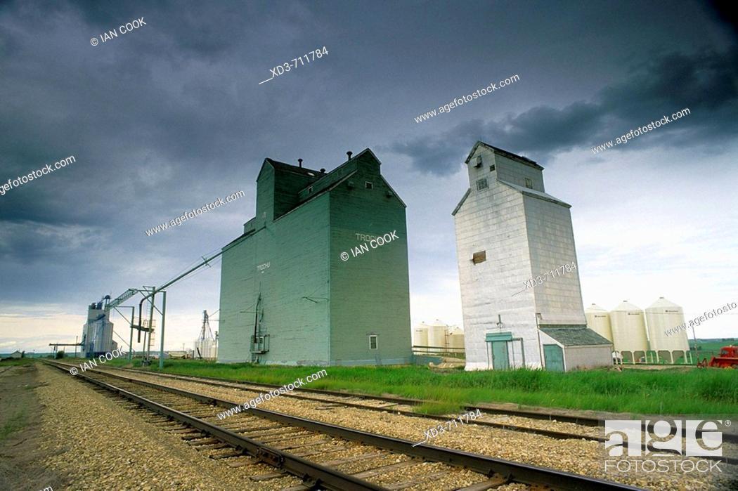 Stock Photo: Grain elevators.Trochu, Alberta, Canada.