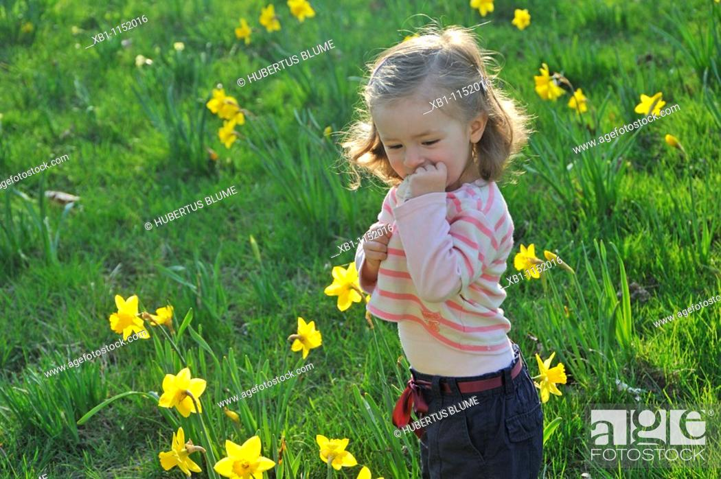 Stock Photo: small child in a meadow with Daffodils.
