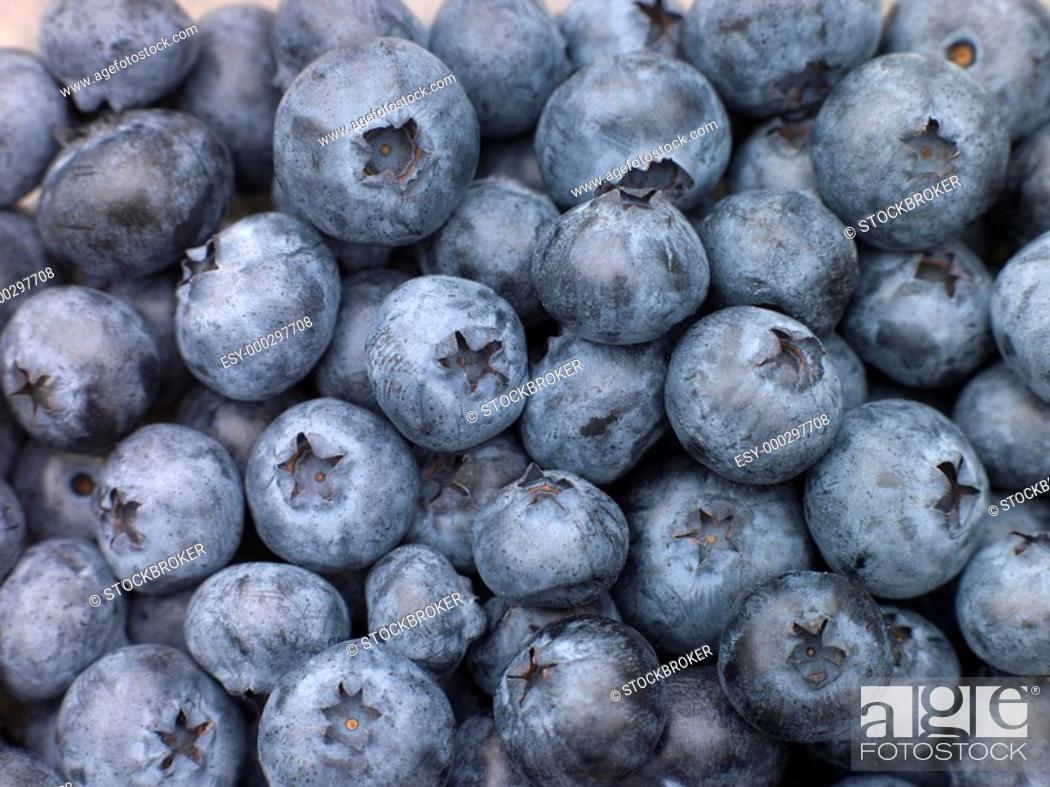 Stock Photo: Fresh Blueberries.