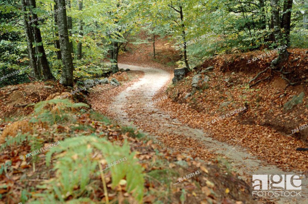 Stock Photo: Trail.