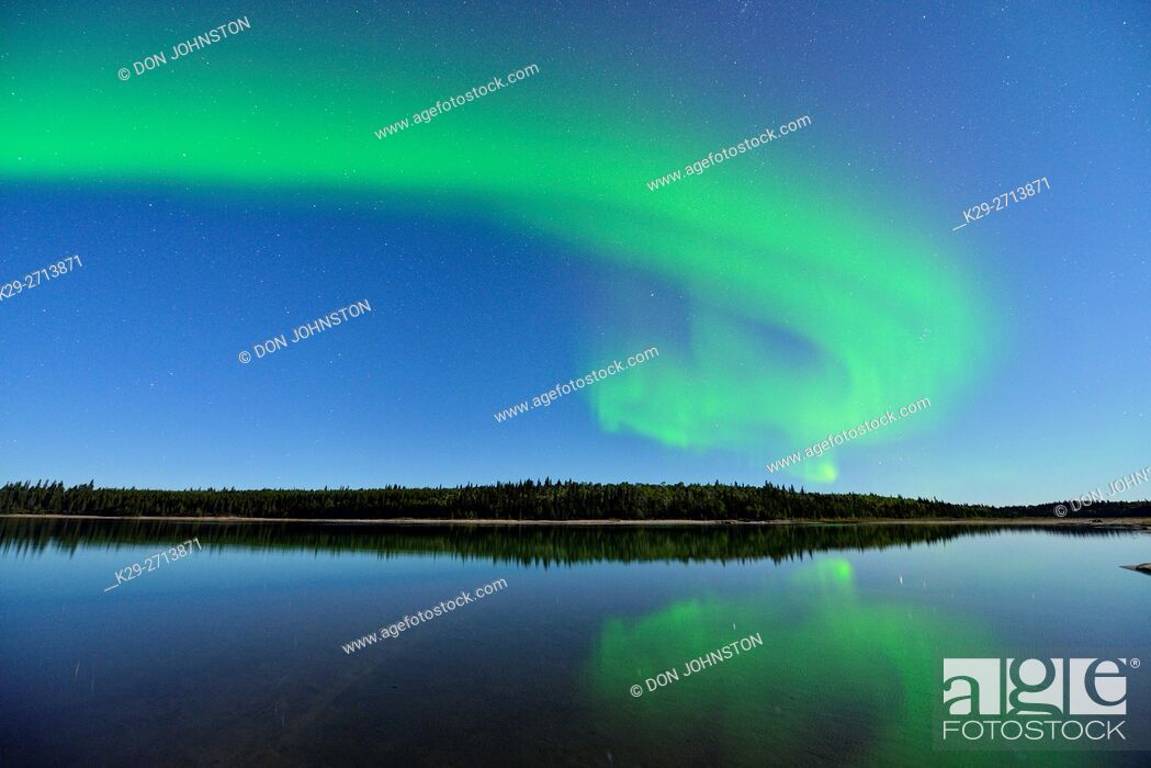Stock Photo: Aurora borelais (Northern Lights) over Pine Lake in moonlight, Wood Buffalo Ntional Park, Alberta, Canada.