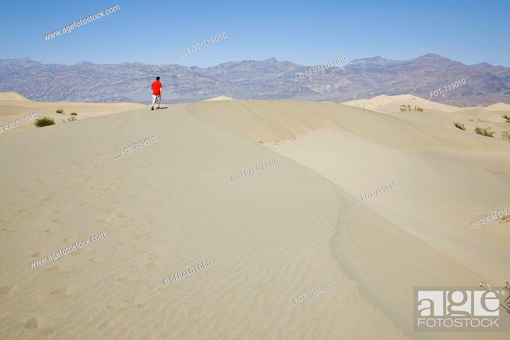 Stock Photo: A person walking along a sanddune, Death Valley, California, USA.
