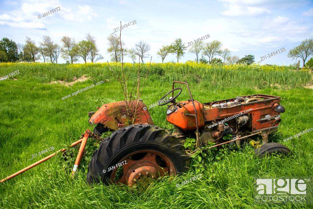 Stock Photo: Old red tractor in meadow in holland.