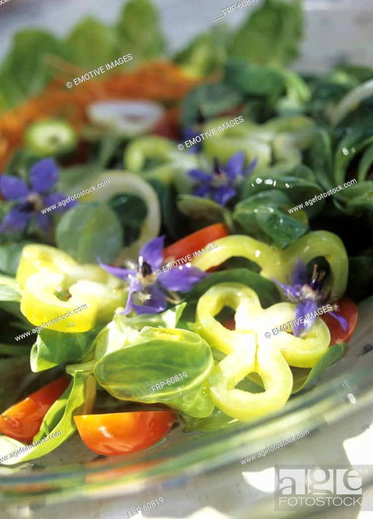 Stock Photo: Greek salad with borage, tomatoes ans basil.