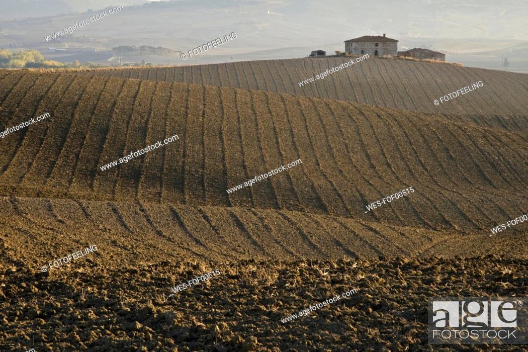 Stock Photo: Italy, Tuscany, Farm building.