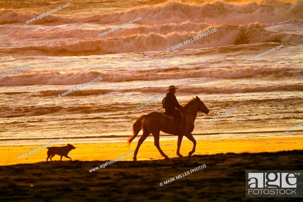 Stock Photo: Horseback rider on beach San Francisco California USA.