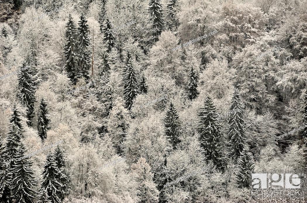 Stock Photo: Mountain, France, saint-gervais.