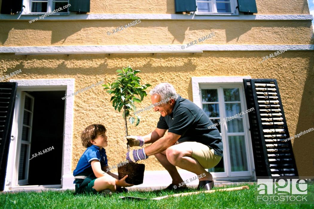 Imagen: Side view of grandfather and grandson planting a tree.
