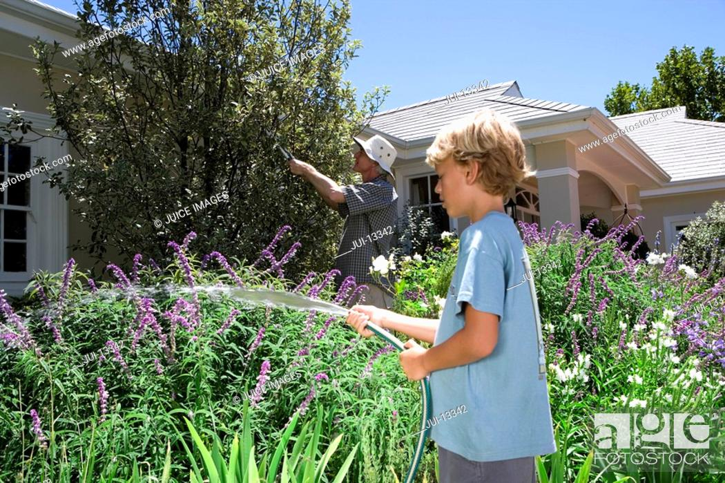 Stock Photo: Father and son 8-10 gardening, boy with hose, side view.
