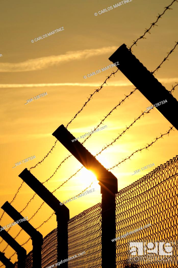 Stock Photo: Barbed wire fence with sunset. El Prat del Llobregat, Baix Llobregat, Barcelona, Catalonia, Spain.