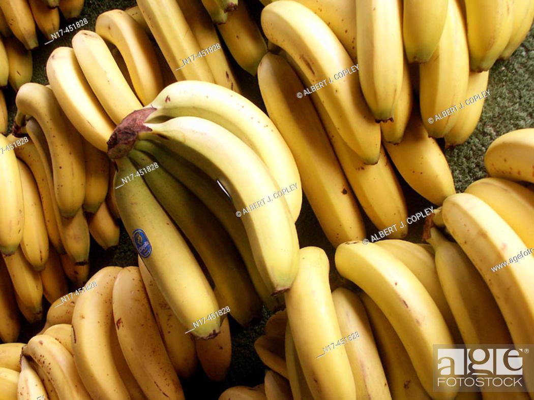 Stock Photo: Banana bunch.