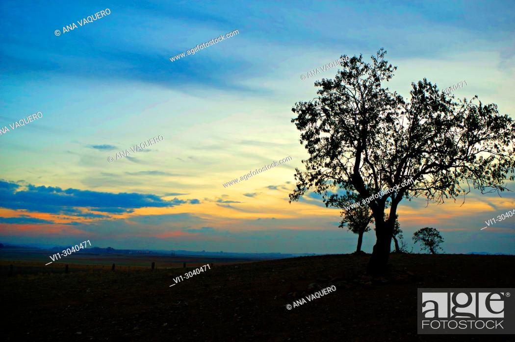 Stock Photo: Sunset from Escurial, Cáceres, Estremadura.