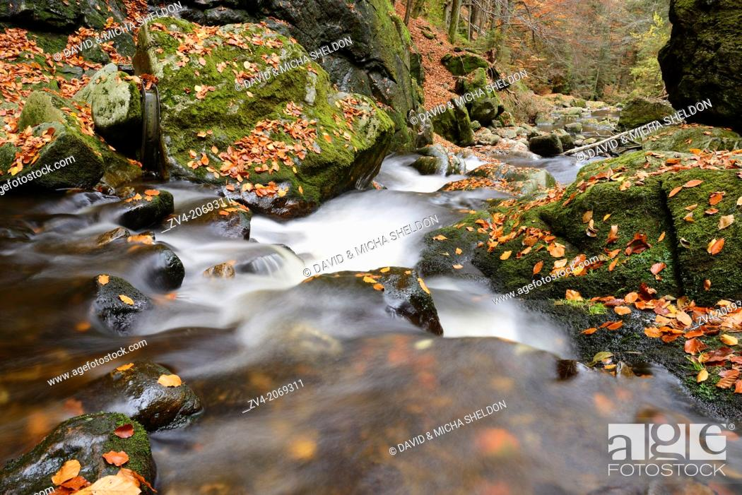 Stock Photo: Landscape of a watercourse in autumn in the bavarian forest.