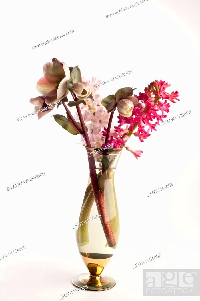 Stock Photo: A bouquet of flowers, including Lenten roses Helleborus orientalis and hyacinth.