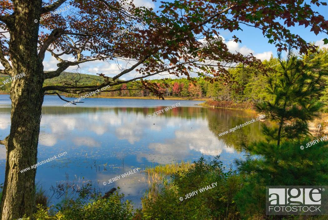 Stock Photo: Witch Hole Pond in Acadia National Park on Mount Desert Island in Maine, USA.