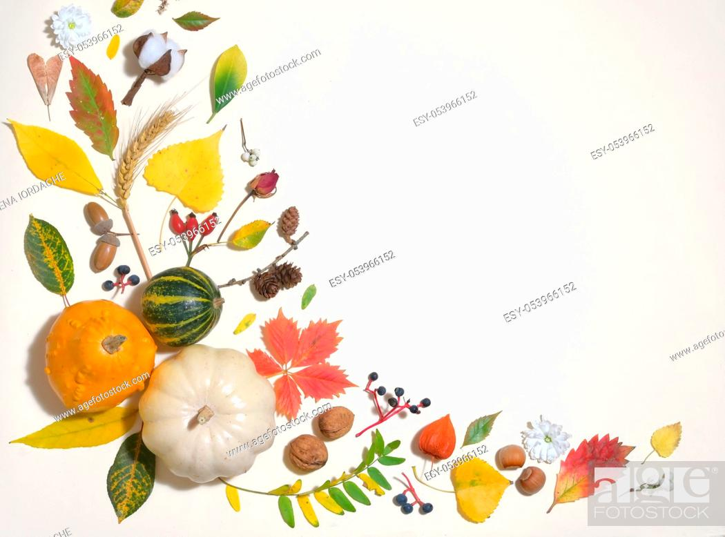 Stock Photo: Autumn Colourful Leaves In Frame Isolated.