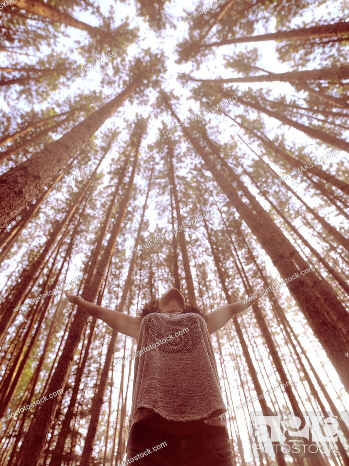 Stock Photo: Young woman standing under tall pine trees in a forest with raised hands toward tree tops bathing in sunlight. Muskoka, Ontario, Canada.