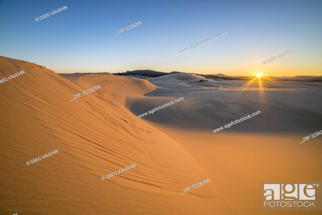 Stock Photo: Sand dunes at Umpqua Dunes, Oregon Dunes National Recreation Area, Oregon Coast.