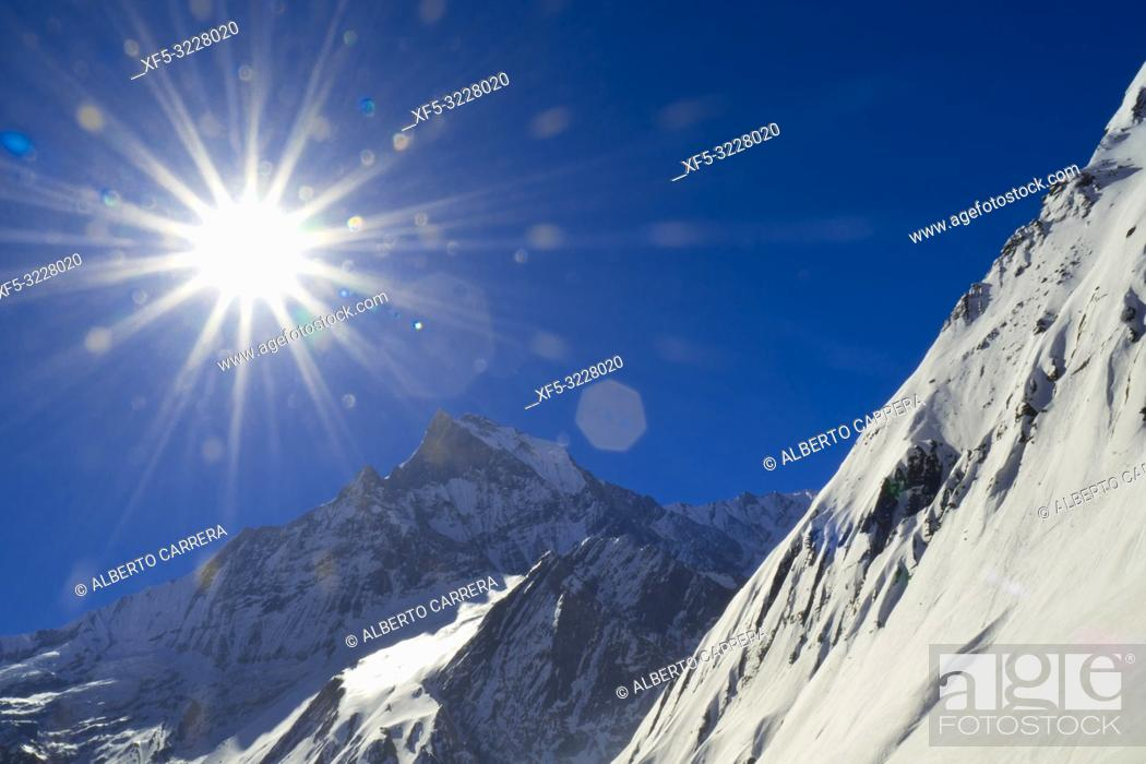 Imagen: Machapuchare Holy Mountain, Fish Tail, Trek to Annapurna Base Camp, Annapurna Conservation Area, Himalaya, Nepal, Asia.