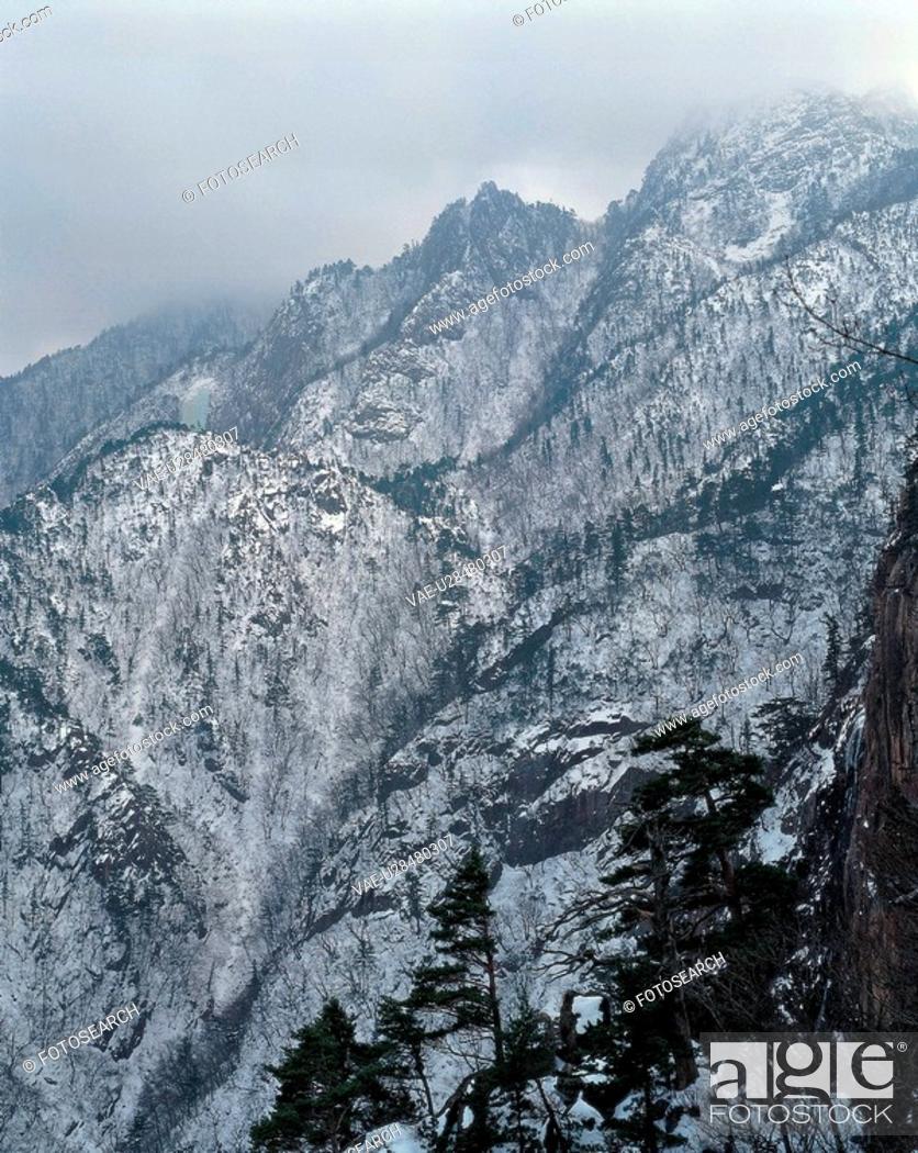 Stock Photo: winter, scenery, season, tree, snow, mountainous, nature.