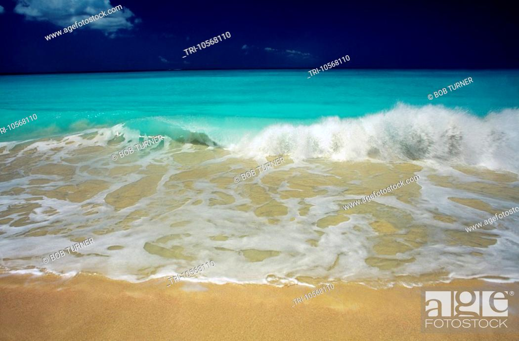 Stock Photo Codrington Barbuda Palm Beach
