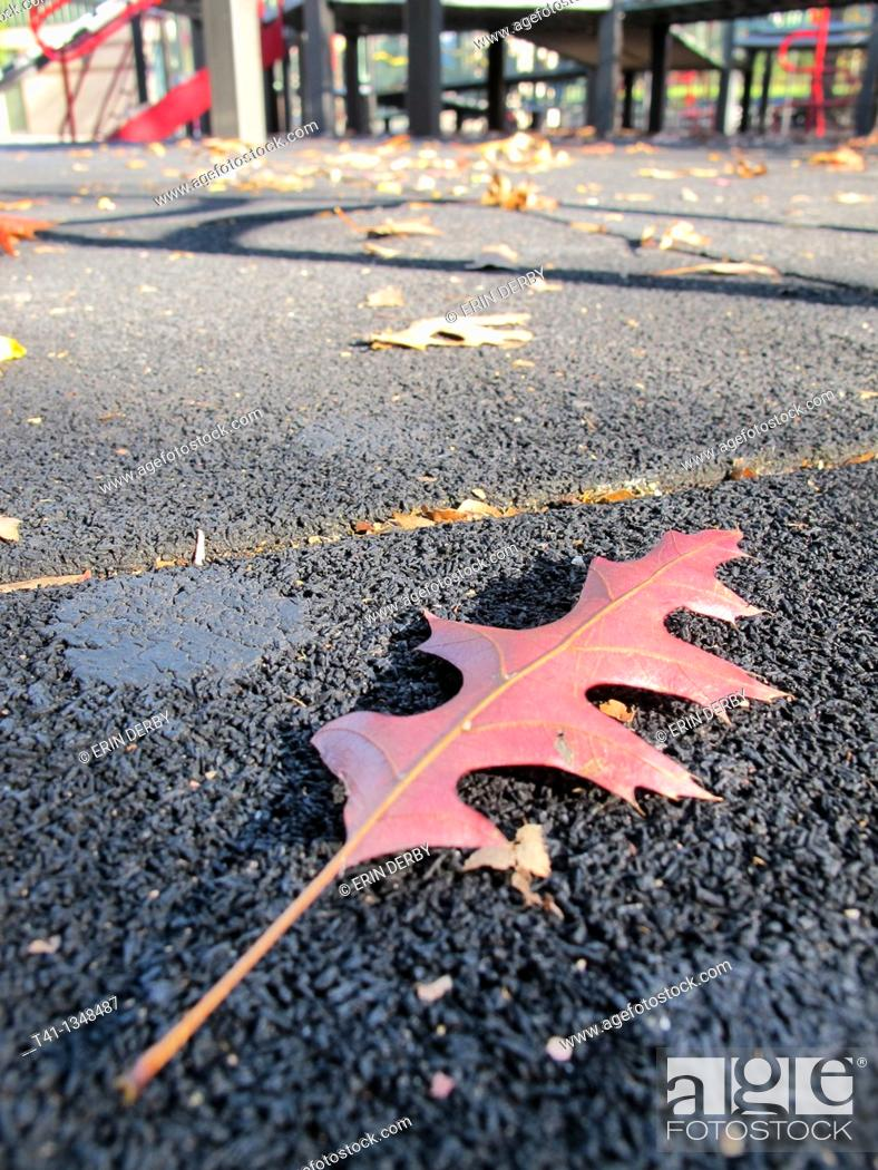 Stock Photo: A beautiful red leaf fallen on a crisp Fall day in a Brooklyn, NY playground.