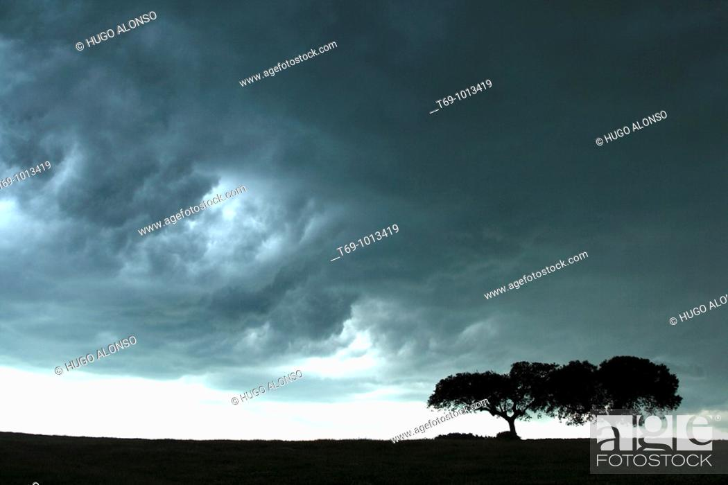 Stock Photo: Storm in Monfrague Natural Park. Caceres province. Extremadura. Spain.