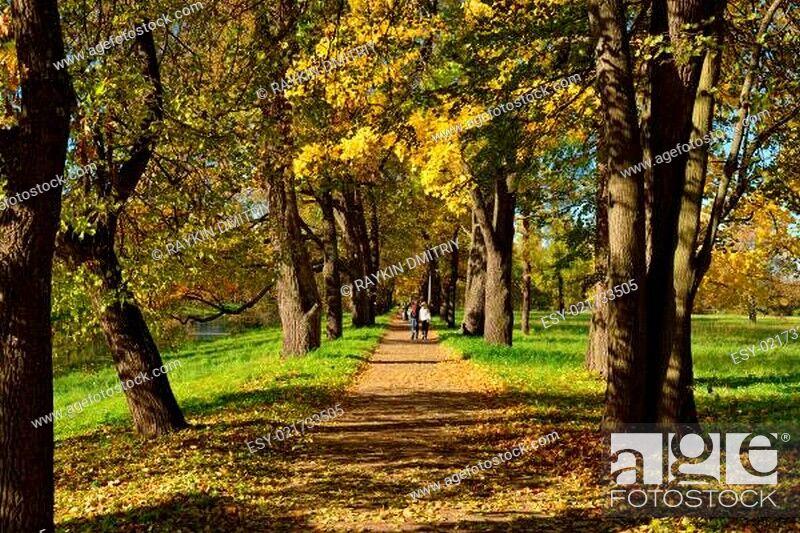 Stock Photo: Autumn sunny landscape with  in Pushkin garden.