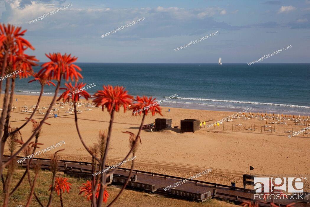 Imagen: Portugal, Algarve, Praia Da Rocha, Beach & Flowers.