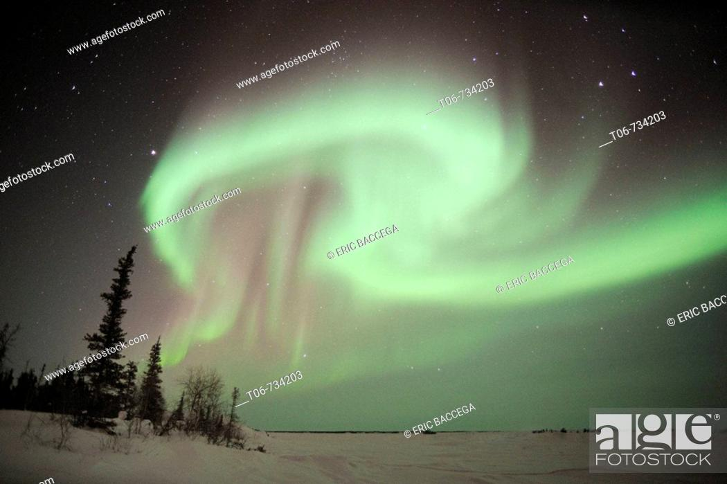 Stock Photo: Northern lights (Aurora borealis) Northwest territories, March 2008, Canada.