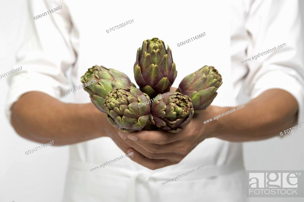 Stock Photo: Chef holding artichokes (mid section).