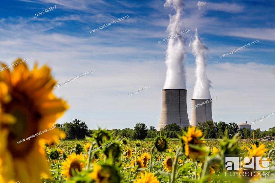 Stock Photo: Golfech Nuclear Power Plant and sunflowers field, Tarn et Garonne, France, Europe.