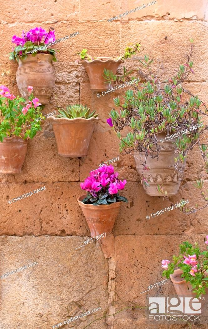 Stock Photo: Beautiful terracotta flowerpots with pink cyclamen flowers on stone wall in Valldemossa Mallorca.