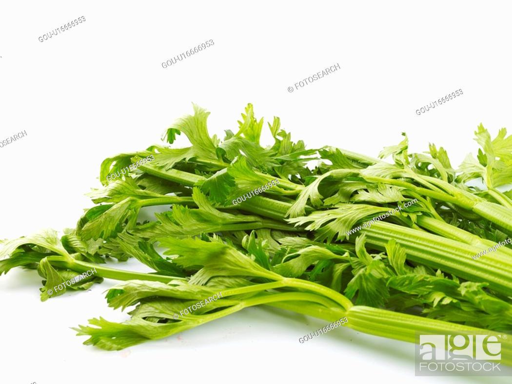 Stock Photo: vegetables, food, ingredient, food material, cuisine, celery.