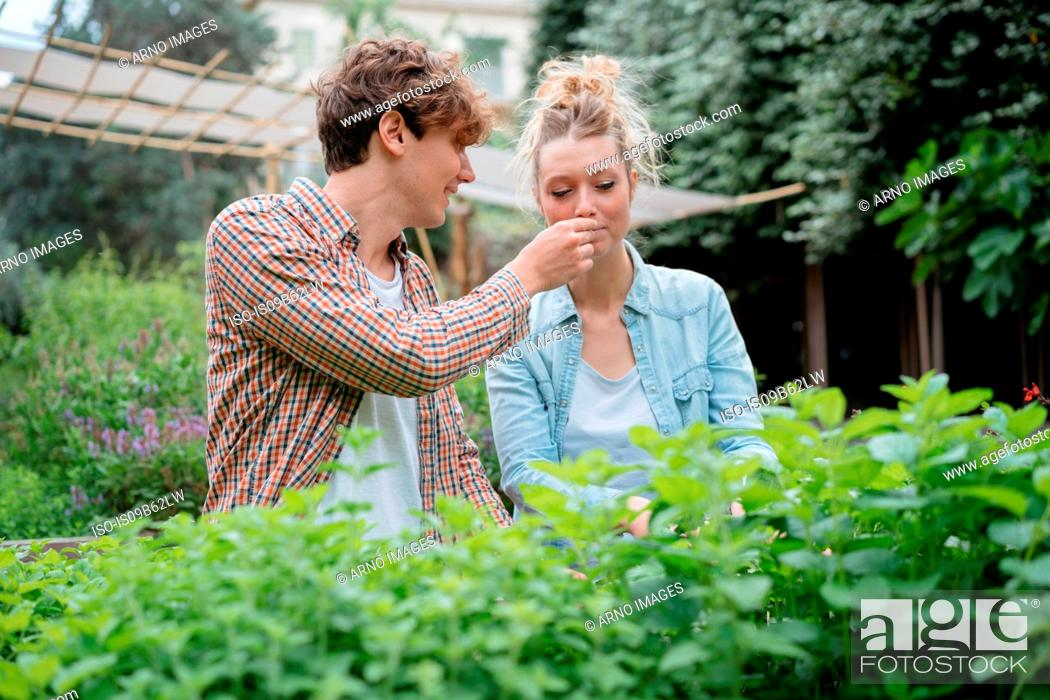 Imagen: Young man and woman in garden, young man holding plant for woman to smell.