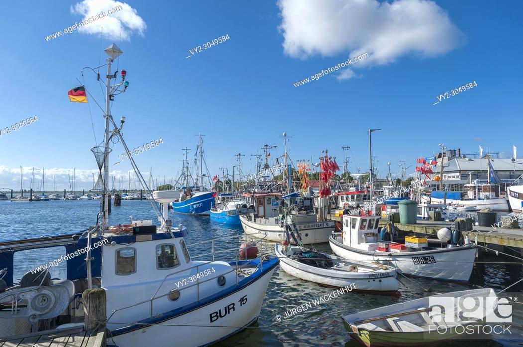 Imagen: Fishing harbor, Burgstaaken, Fehmarn, Baltic Sea, Schleswig-Holstein, Germany, Europe.