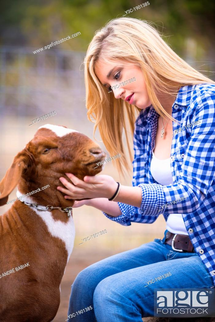 Stock Photo: Female teenager petting a goat on a livestock farm in Texas.