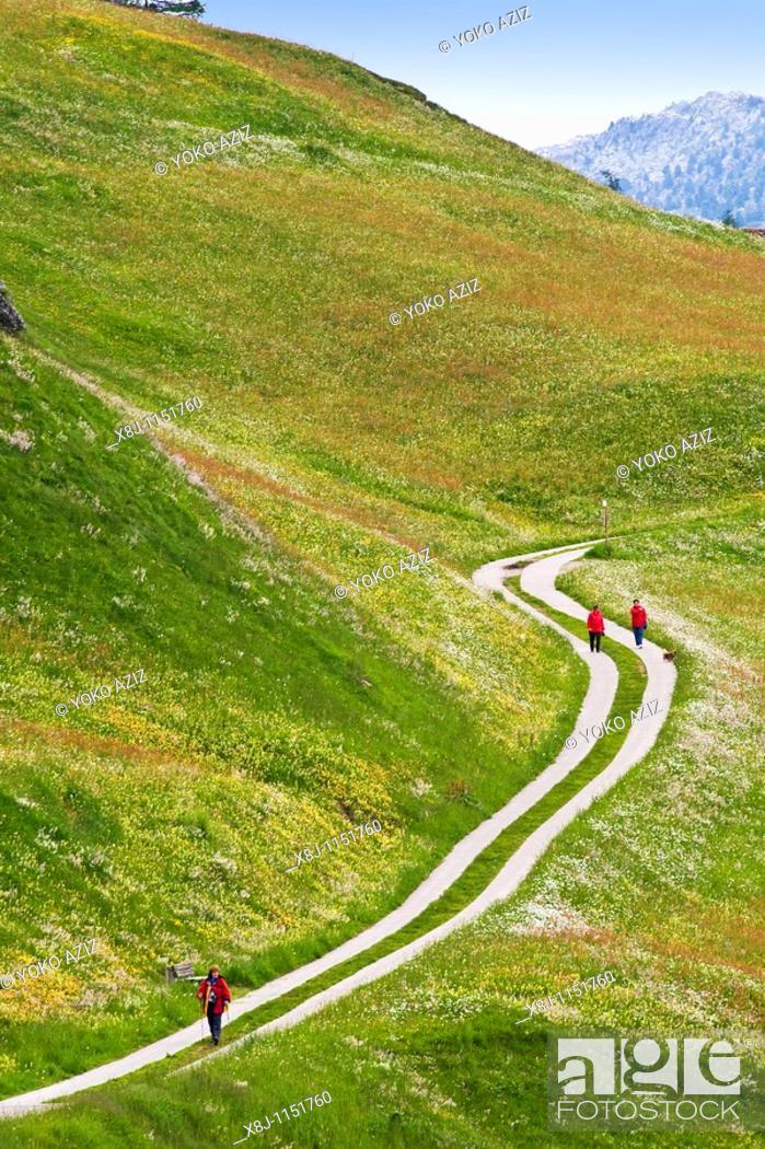 Stock Photo: Trekking, Splugen, Canton Grigioni, Switzerland.