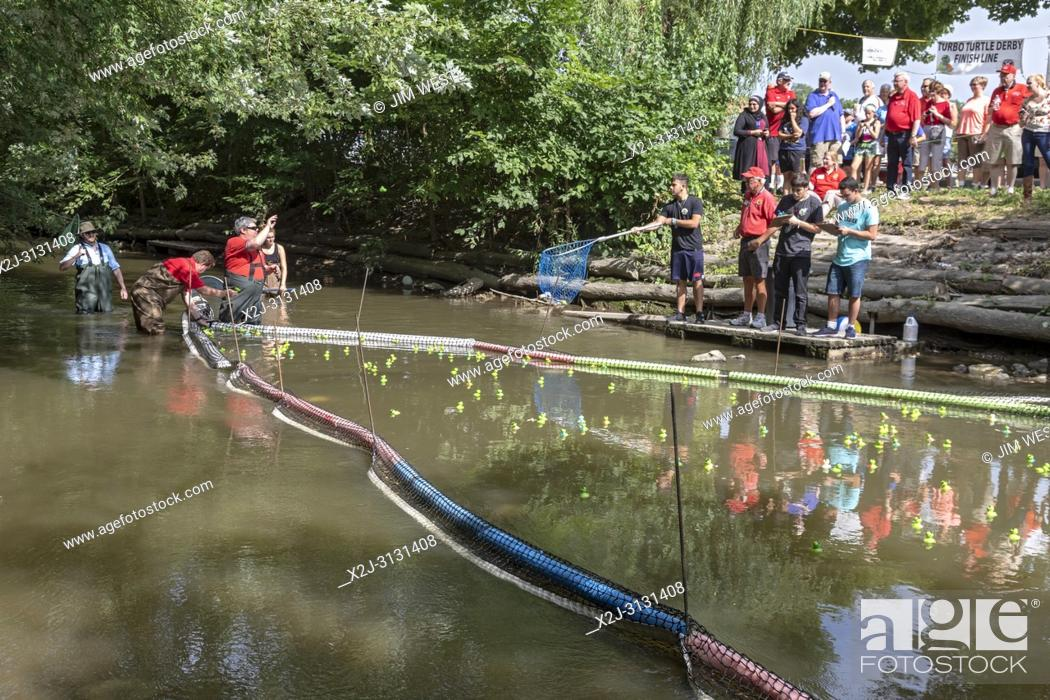 Stock Photo: Dearborn, Michigan - Race officials pick out the winners of the plastic turtle race on the Rouge River during the annual Dearborn homecoming festival.