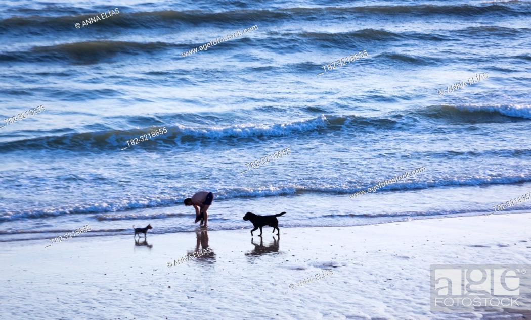 Stock Photo: People and dogs in Matalascañas beach, Huelva Province, Andalusia, Spain.