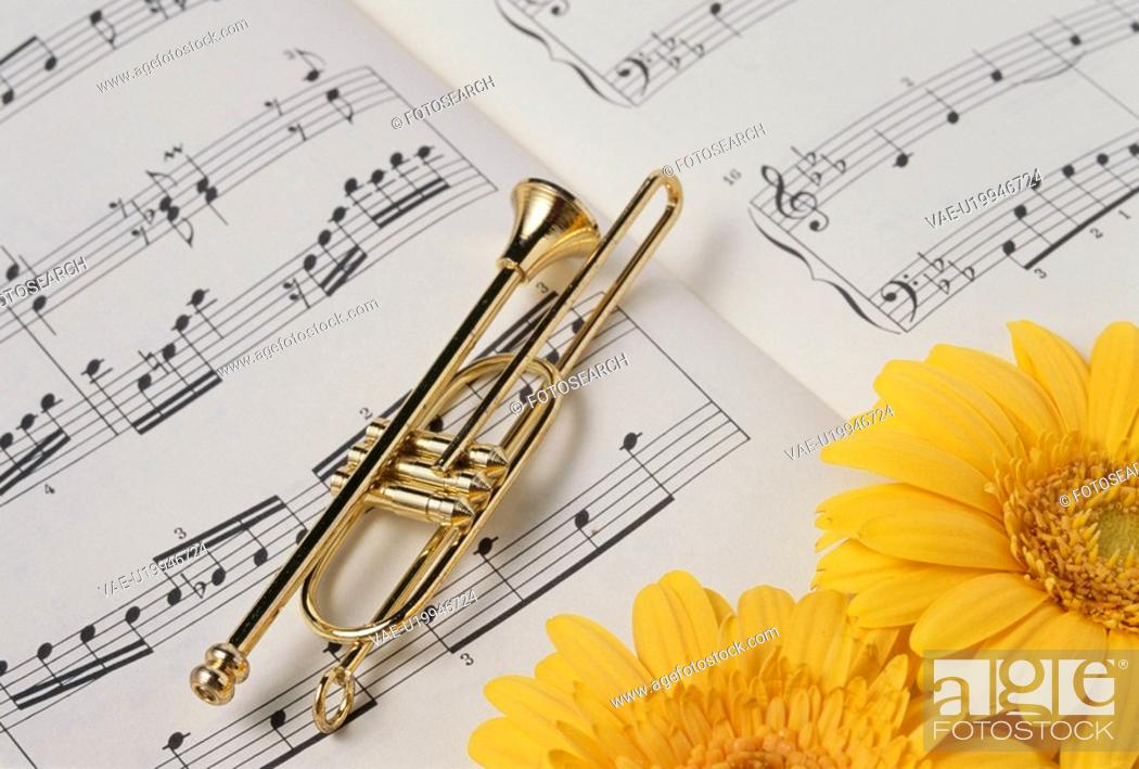 Stock Photo: Gerbera And The Accessories Of A Trumpet And A Score.