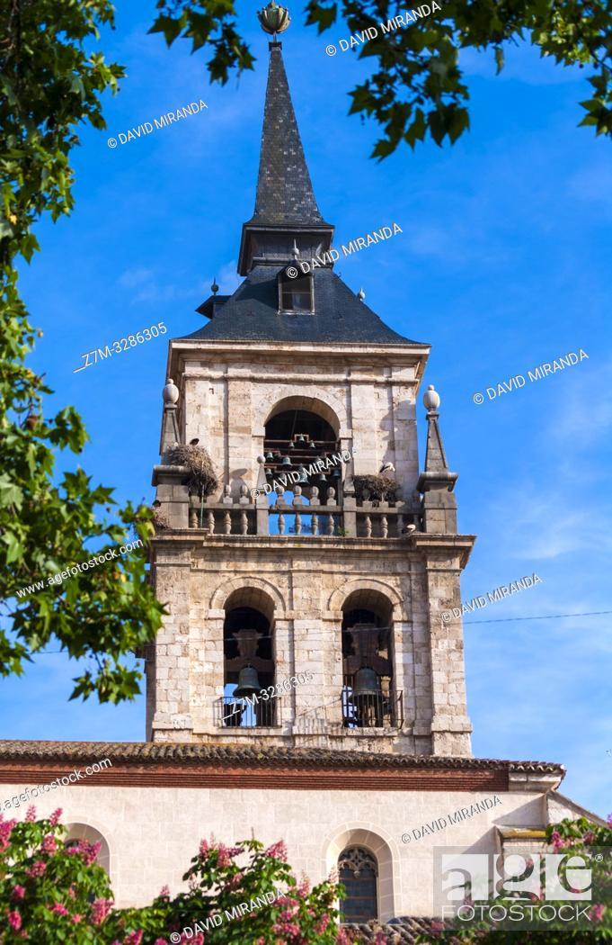 Stock Photo: Torre de la catedral de los Santos Justo y Pastor. Alcalá de Henares. Madrid. España.